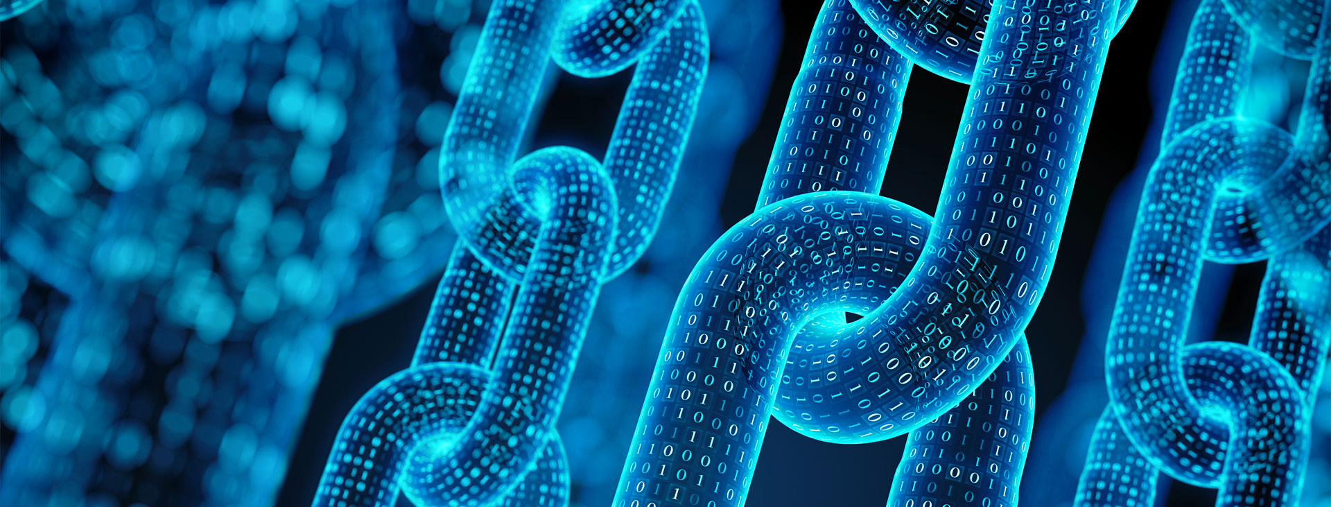 Blockchain on WordPress   What You Need to Know?