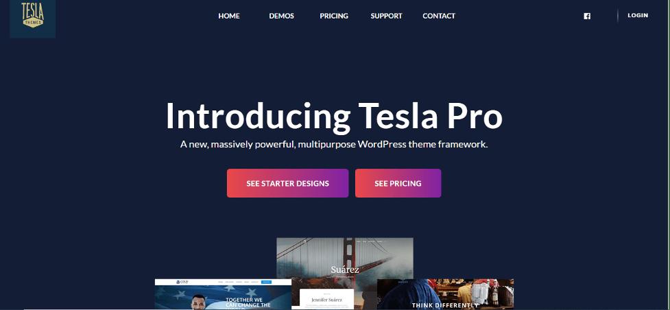 tesla pro wordpress theme